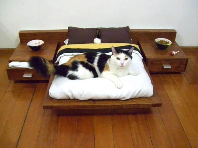mobilia-gato-3