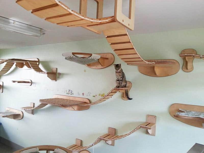mobilia-gato-30