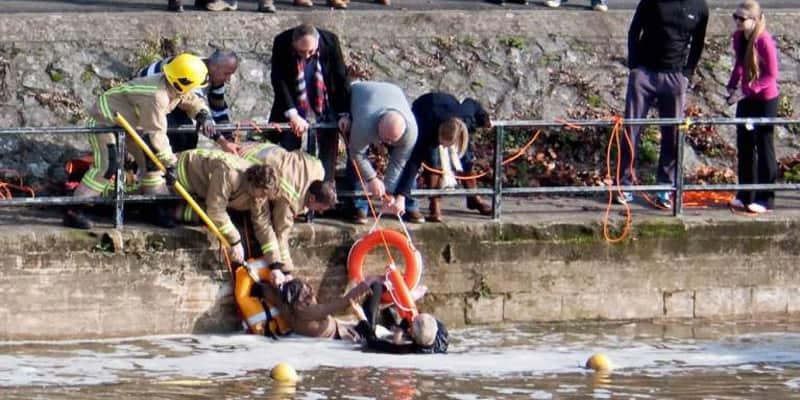 Senhora de 70 anos arrisca sua própria vida para salvar seu cão  3