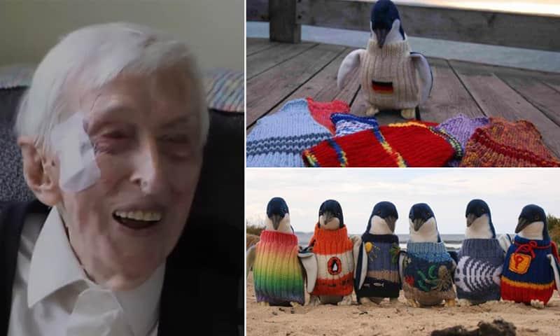 Senhor de 109 anos tricotou casacos de lã para salvar pinguins afetados por derramamento de óleo 1