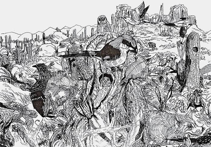 detailed-pen-drawings-prodigy-dusan-krtolica-8