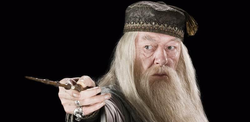 Autora da saga 'Harry Potter' dá resposta perfeita para fã que questionou a sexualidade de Dumbledore 3