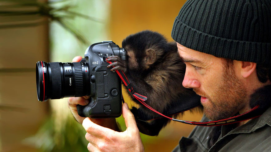 animals-with-camera-helping-photographers-10__880a