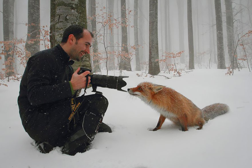 animals-with-camera-helping-photographers-21-1__880a