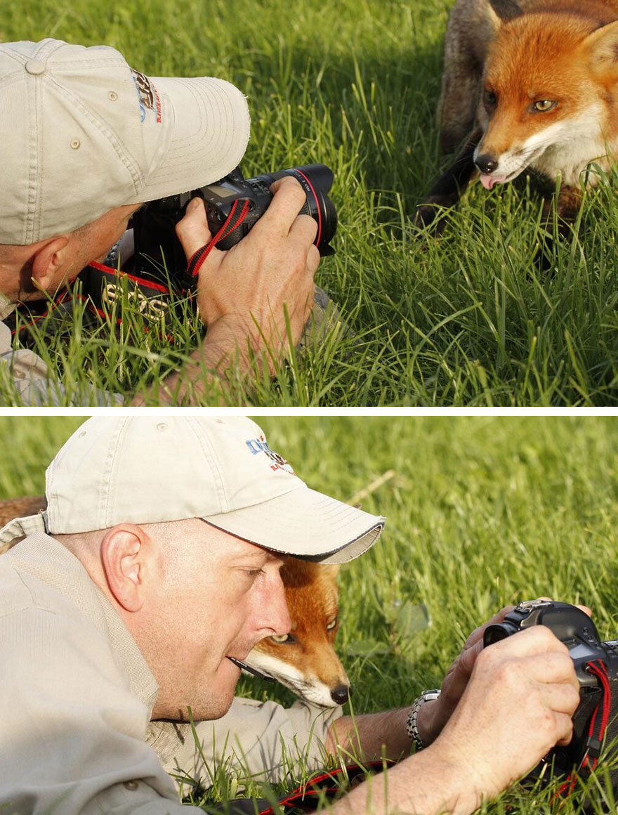 animals-with-camera-helping-photographers-31__880a