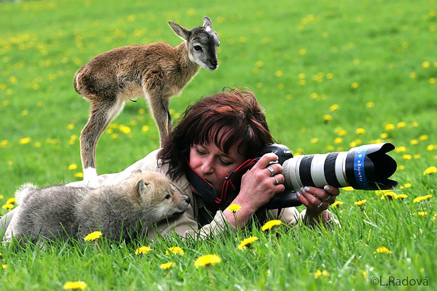 animals-with-camera-helping-photographers-7__880a