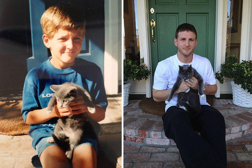 before-and-after-growing-up-cats-52__880a