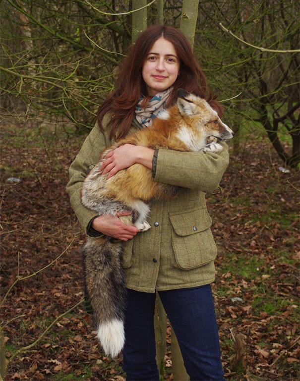 rescued-tame-pet-fox-cub-todd-emma-dsylva-6a