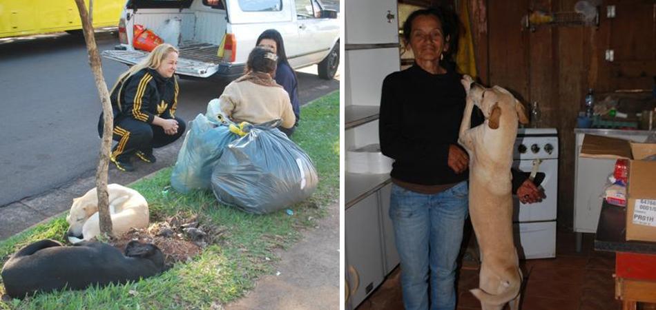 Idosa que se recusava a ir pra abrigo e abandonar seus cães recebe ajuda e agora tem casa pra morar 1
