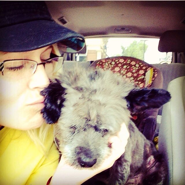 woman-adopts-abandoned-dying-dog-chester-nicole-elliott-5a