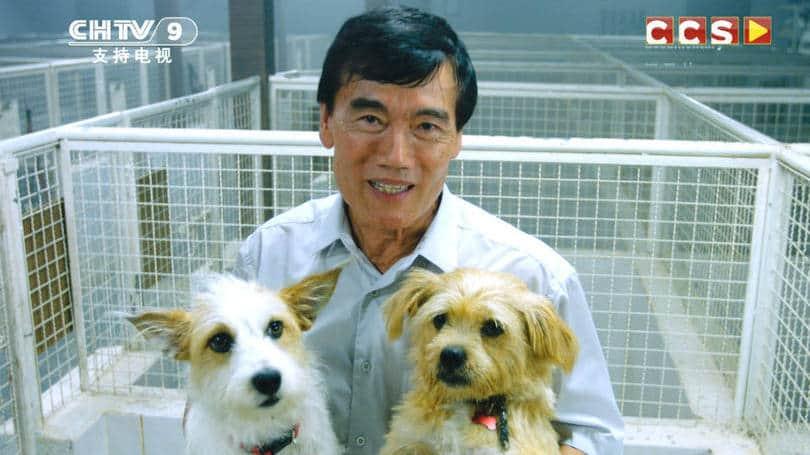 Campanha de ONG causa polêmica ao falar de carne de cachorro 2