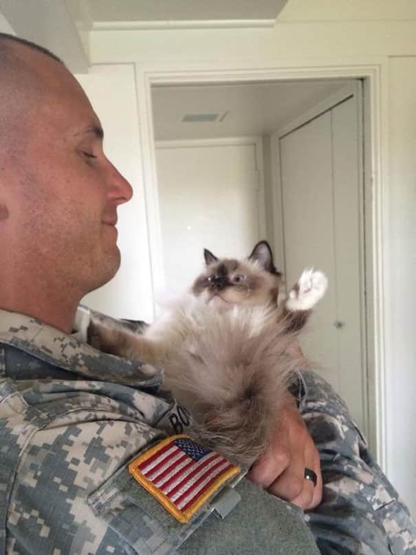 Pets-Of-War3__605