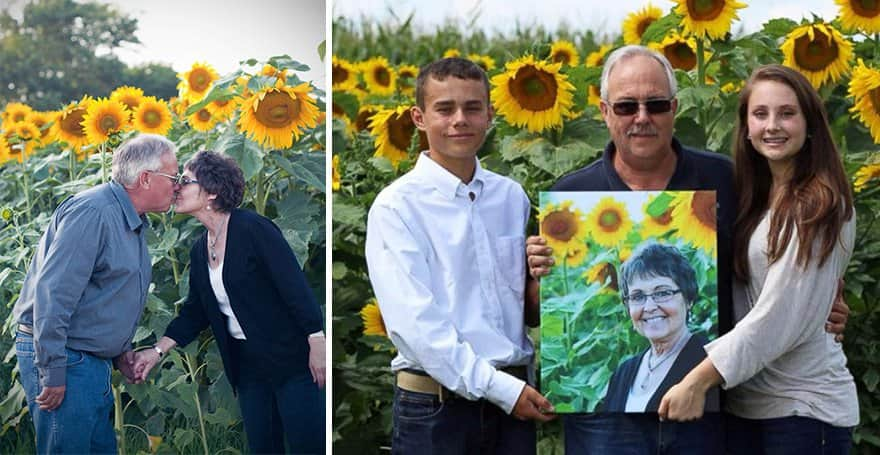 Homem planta mais de 1000 girassóis para homenagear sua esposa que morreu de câncer 3
