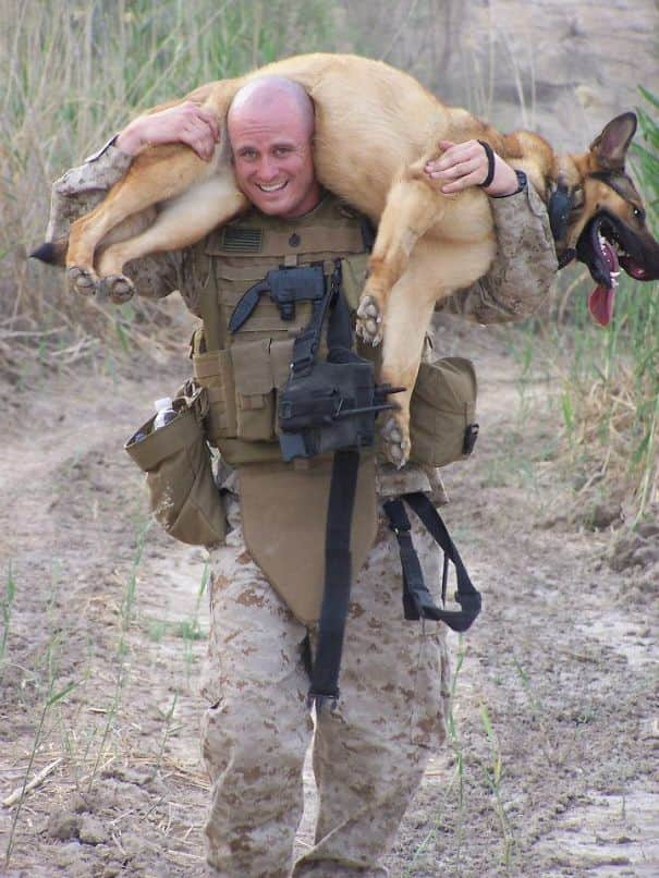 soldier-pet-resque-animal-war-211__605