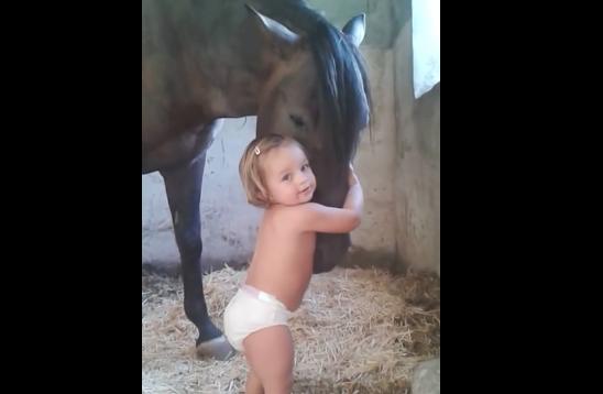 Encontro entre menininha e cavalo é o vídeo mais fofo do dia 1