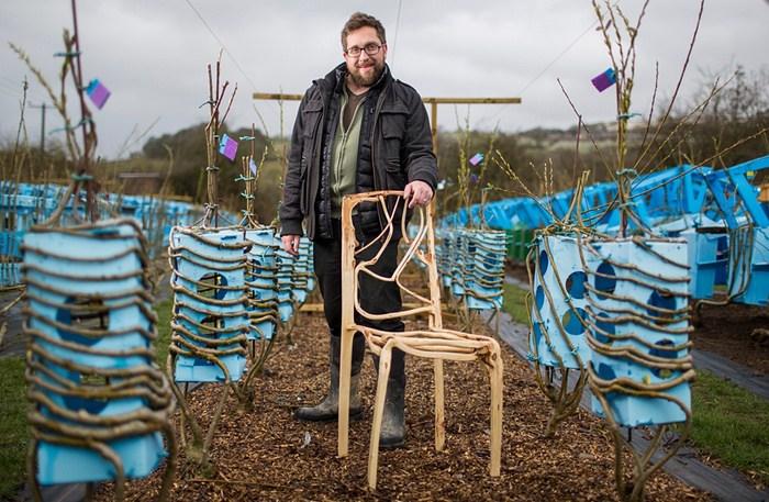"""Designer e agricultor, este homem consegue """"plantar"""" seus próprios móveis 1"""