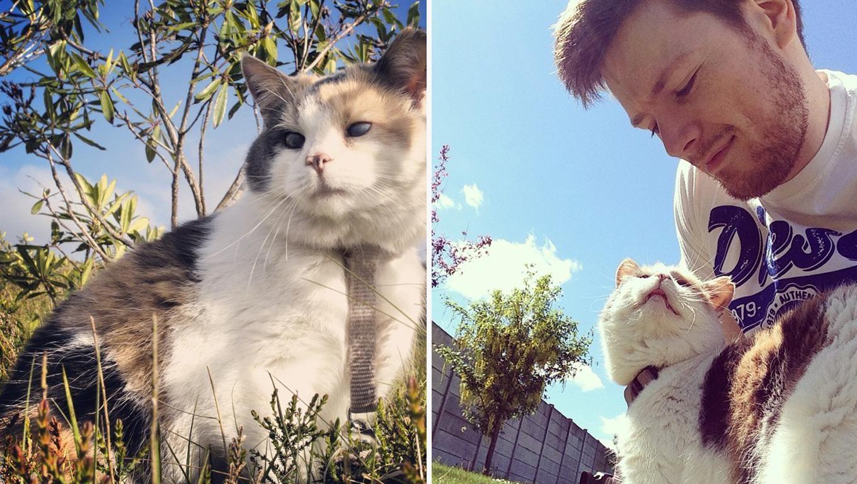Homem e gata cega vivem aventuras incríveis no alto de uma montanha 7