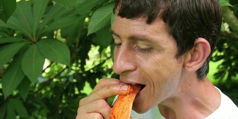 Colecionador de frutas, esse paulista já plantou mais de 1.300 espécies 3