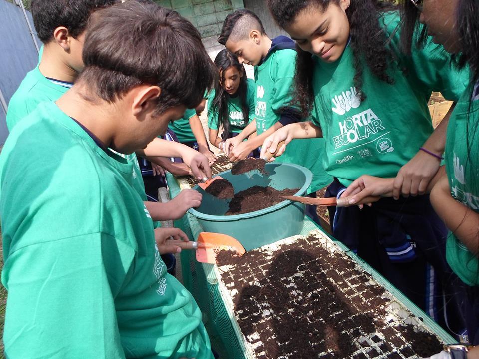 Projeto em SP estimula alimentação saudável entre crianças de escolas da rede pública 4