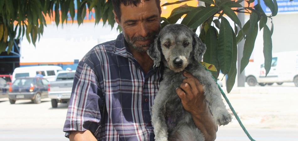 Mesmo morando na rua, ele proporciona um lar para 17 cães 1