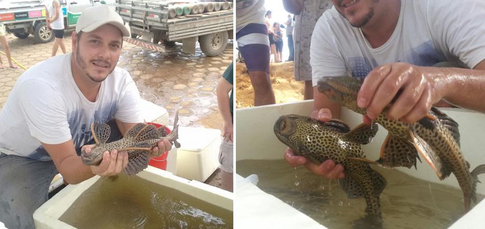 Peixes do Rio Doce começam a ser soltos em lagos graças ao belo trabalho de grupos voluntários 2