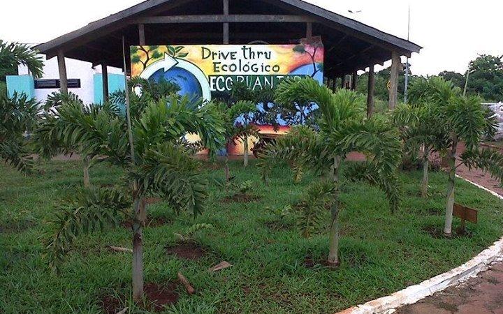drivethruecologico
