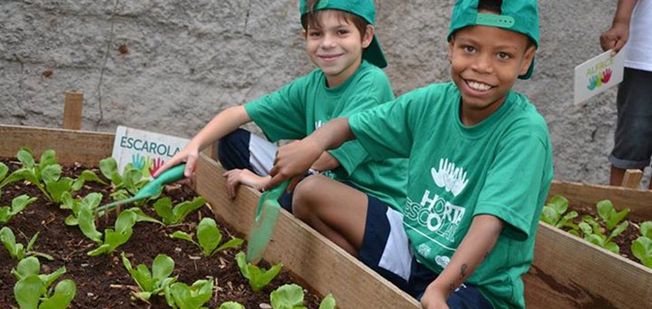 Projeto em SP estimula alimentação saudável entre crianças de escolas da rede pública 1