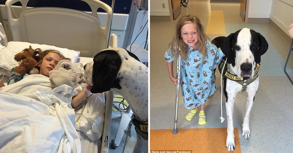 Com doença rara, menina de 11 anos volta a andar com ajuda de seu cão 2