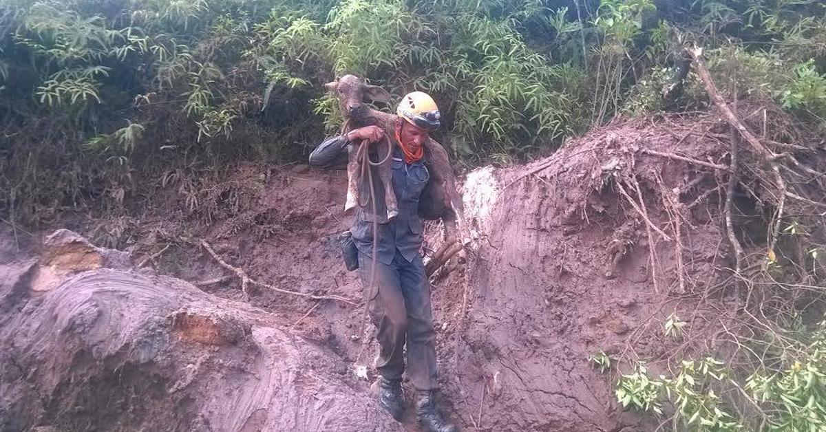 Seleção de fotos mostra o trabalho árduo, corajoso e bravo dos bombeiros em Minas Gerais 1