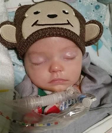 Pequeno Knox, após ser encontrado inconsciente em seu berço. (Foto: Reprodução/Instagram)