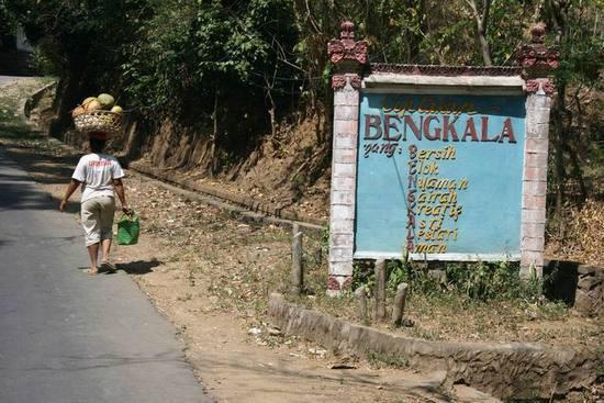 550x367xBengkala-village2.jpg.pagespeed.ic.MuAy_P-DQA