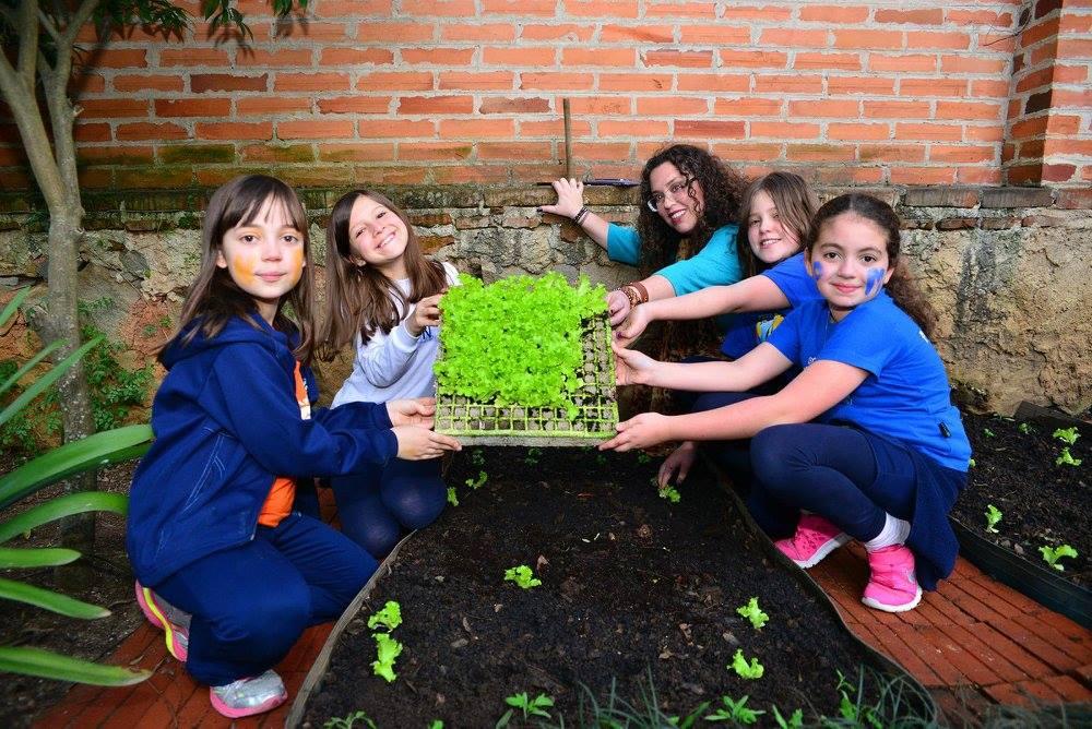 Crianças aprendem inglês nas aulas de horta e reciclagem em Curitiba 3