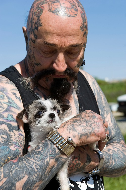 "Rescue Ink, Long Island, New York, taettowierte Motoradgang, Verein zur Rettung mishandelter Hunde und anderer Tierarten ""Batzo"" mit Hund Rescue Ink, the animal rescue group that brings an in your face approach to the fight against animal abuse and neglect. The goups members are heavily tattooed and ride motorbikes. Their pitbull 'Rebel', who lives at their headquarters, was rescued from a dog fighting operation, where he was used as bait. He was near death when two members of Rescue Ink flew to Virginia to save him. Foto © Stefan Falke"