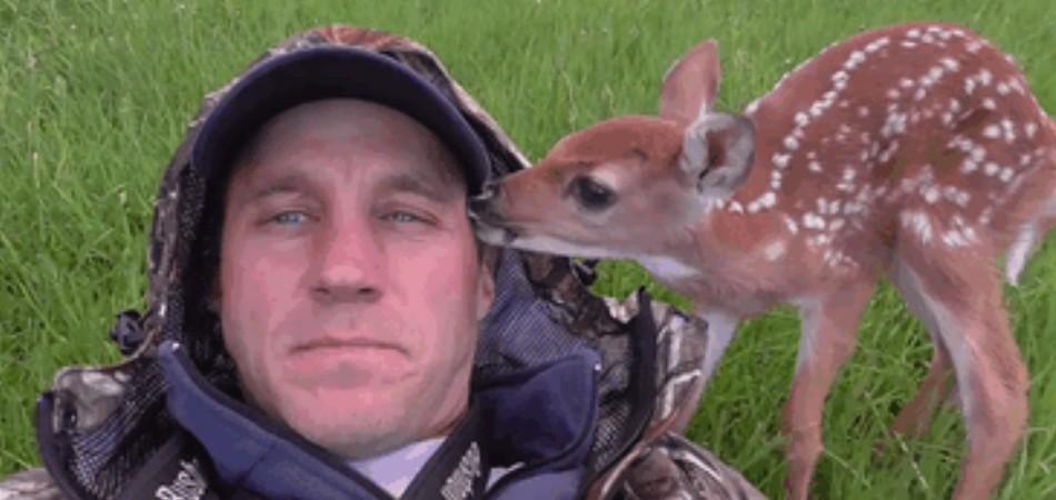 Bebê cervo resgatado por lituano não quer mais deixá-lo 9