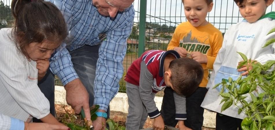 Projeto ensina crianças e idosos a plantar horta juntos para estimular o respeito 4