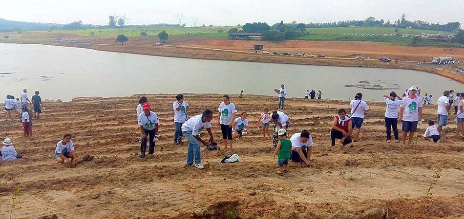 12 mil voluntários se juntaram para plantar 110 mil mudas de árvores no interior de SP 3