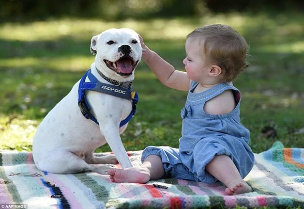 A linda amizade entre uma cadelinha de três patas e uma menina que nasceu com um braço apenas 1