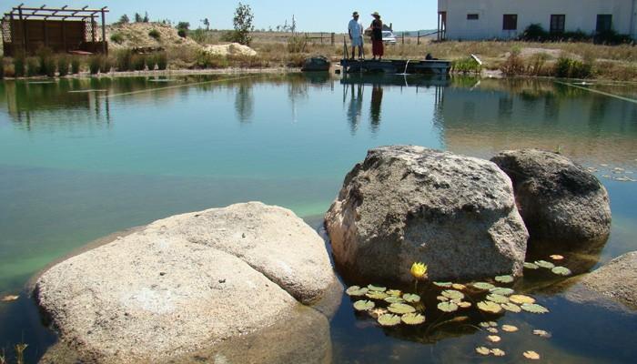 piscina-bio-ciclo2