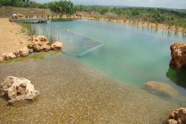piscina-bio-ciclo5