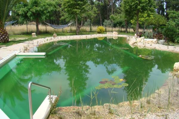 piscina-bio-ciclo9