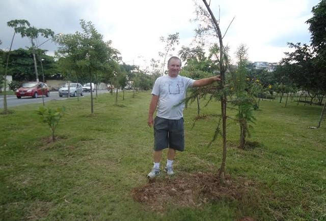 """""""Este é o meu legado"""": sozinho, homem plantou 19 mil árvores em SP 1"""