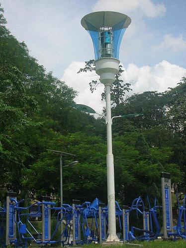 3055951-slide-s-4-these-malaysian-streetlights-kill