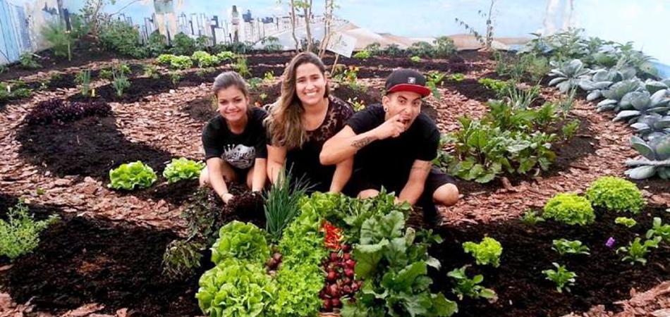 Capão Redondo ganha horta de 80m² para moradores colherem alimentos de graça 3