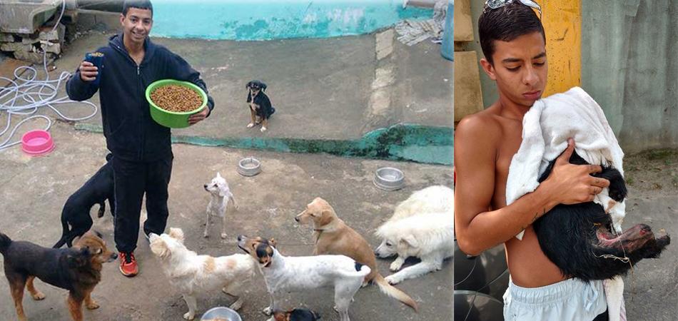 Jovem em SP resgata cães de rua e facilita o processo de adoção 7