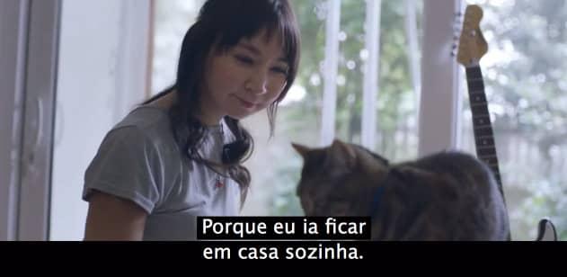 video_cat