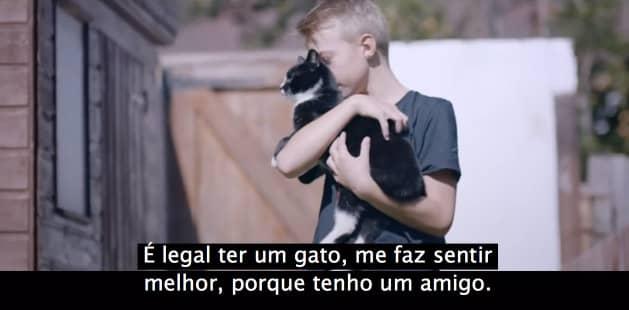video_cat3