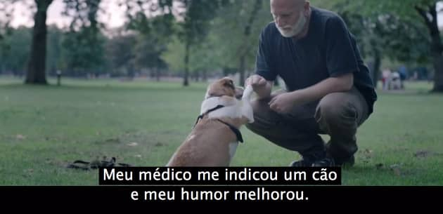 video_cat4