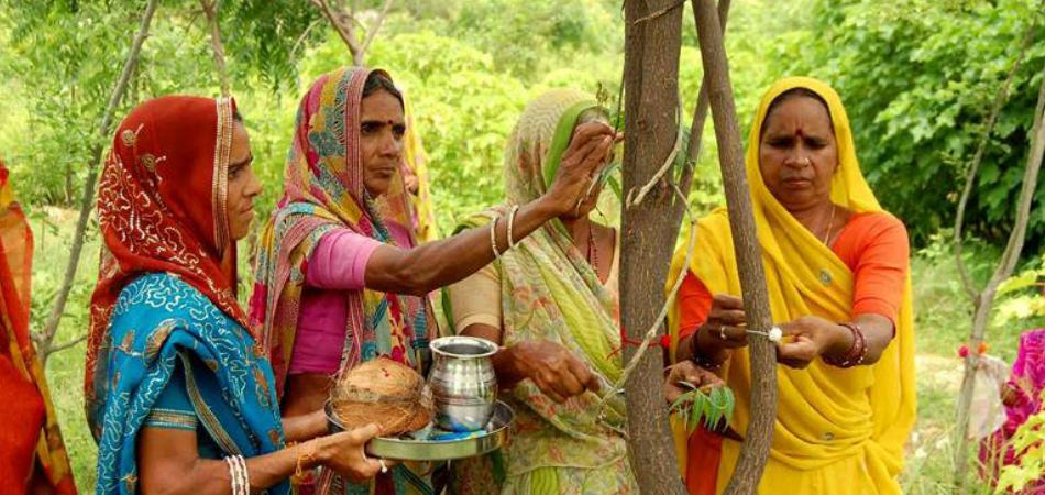 Nesta aldeia indiana, o nascimento de uma menina é celebrado com o plantio de 111 árvores 1