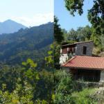 Ecoaldeia em Portugal busca famílias para viver em comunidade vegetariana 3