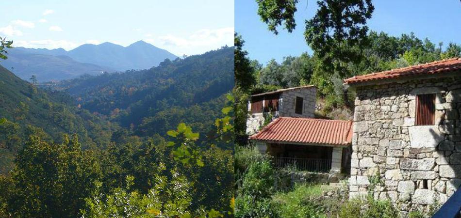 Ecoaldeia em Portugal busca famílias para viver em comunidade vegetariana 2